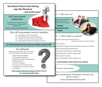 Concept Accountancy Flyers